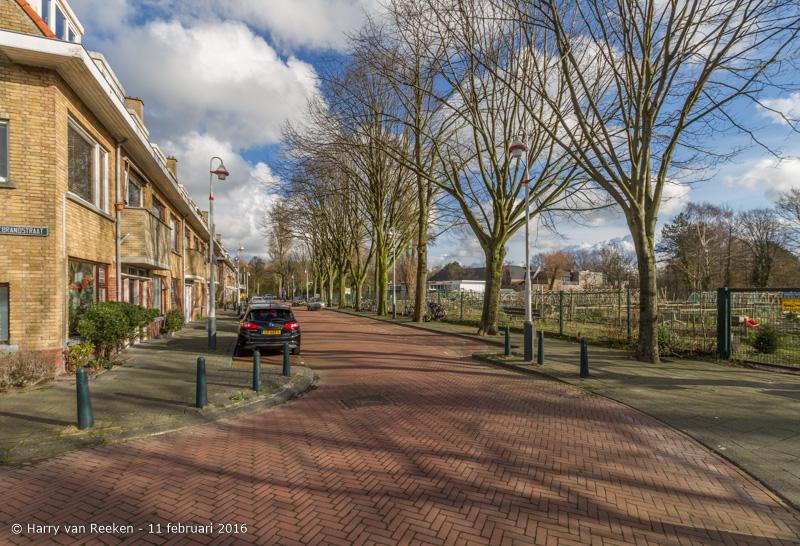 Schimmelweg-010-38