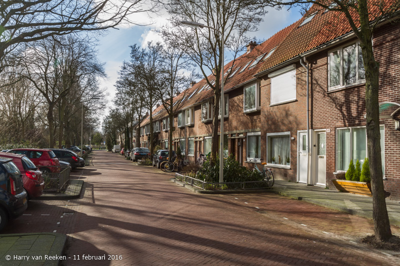 Schimmelweg-013-38