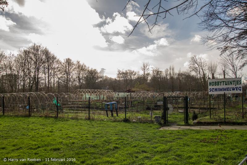 Schimmelweg-014-38