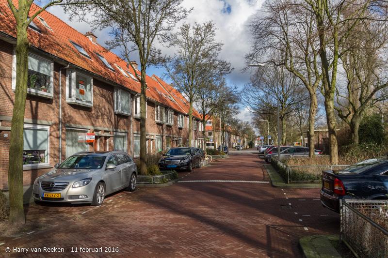 Schimmelweg-020-38