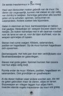 Stadhoudersplantsoen-insectenmuur-wk10-02