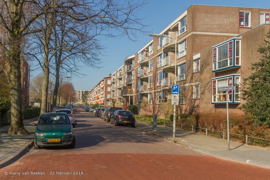 Stokroosstraat-wk12-01