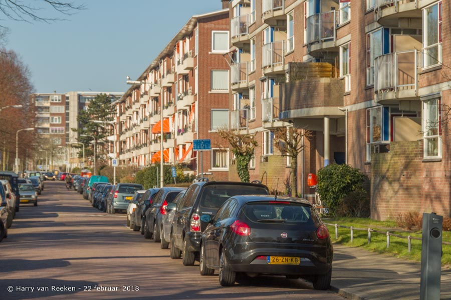 Stokroosstraat-wk12-03