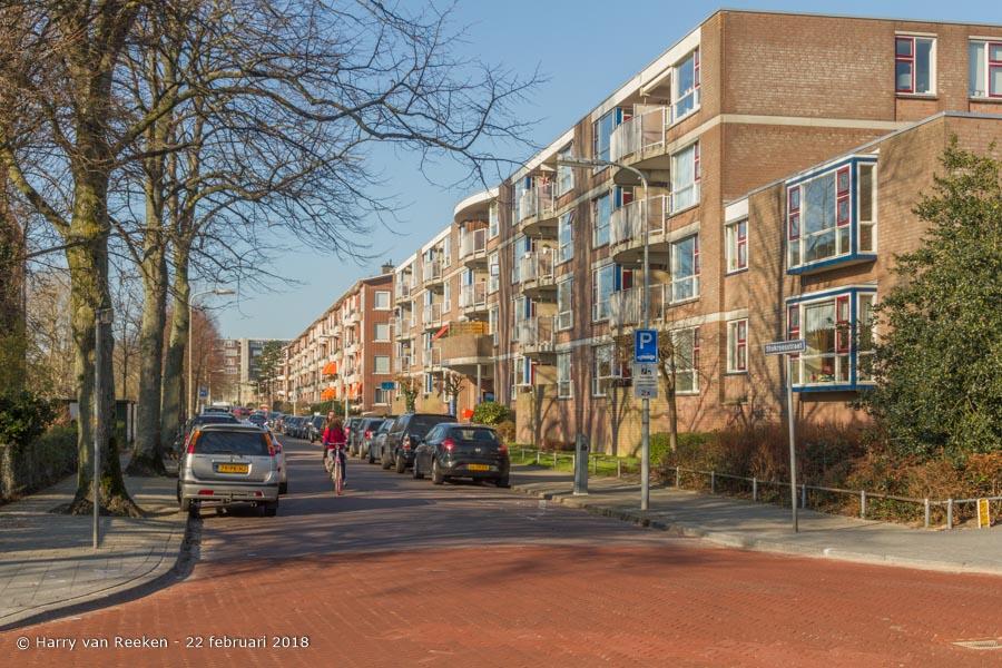 Stokroosstraat-wk12-04
