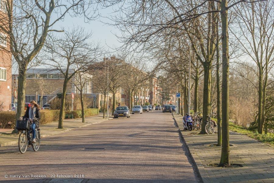 Stokroosstraat-wk12-16