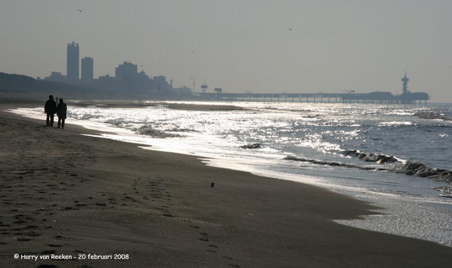 strand-meijendel-04