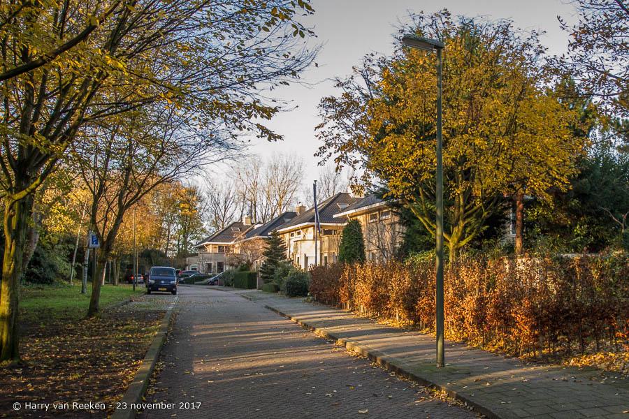 Ternatestraat - Archipelbuurt - 1