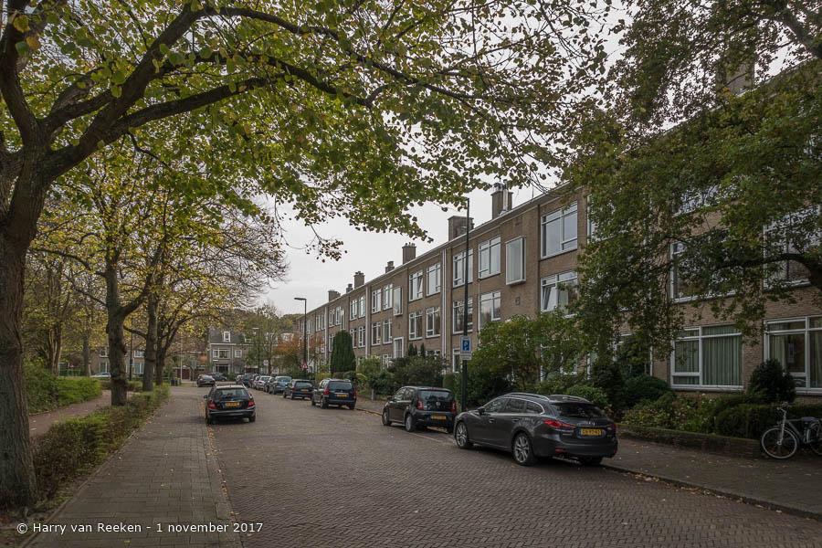 Thérèse Schwartzestraat - Benoordenhout-6