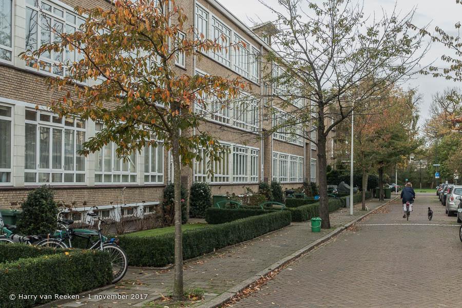 Trigtstraat, van - Benoordenhout-3