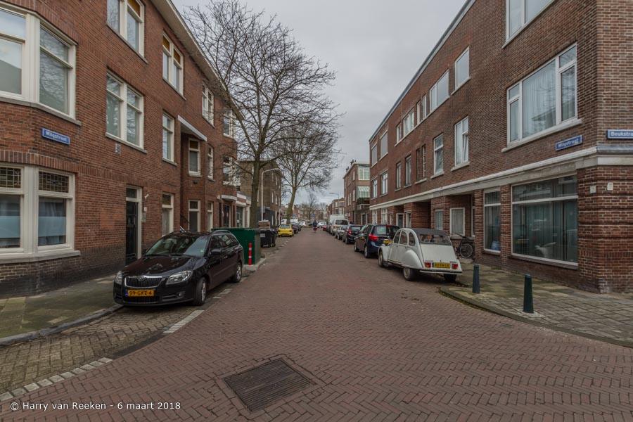 Wilgstraat-wk12-01