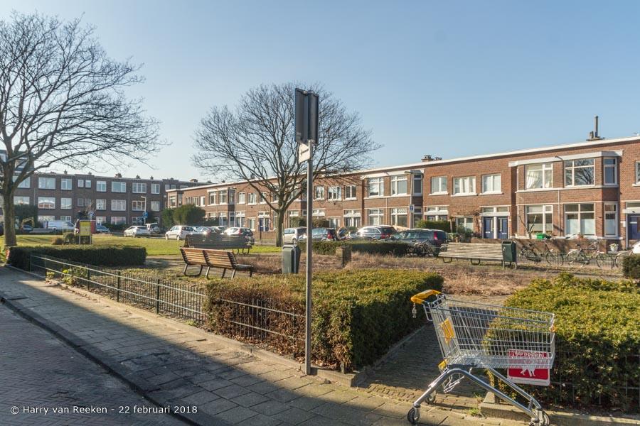 Wingerdstraat-wk12-05