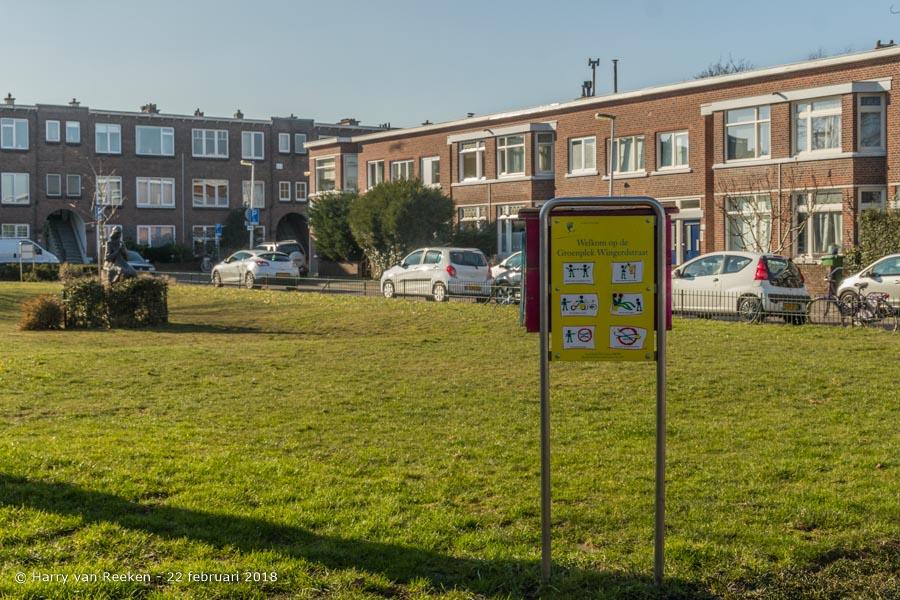 Wingerdstraat-wk12-08