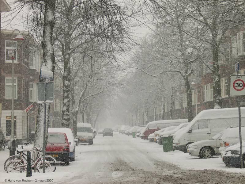 Linnaeusstraat-01