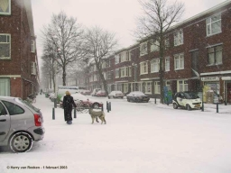 Linnaeusstraat-05