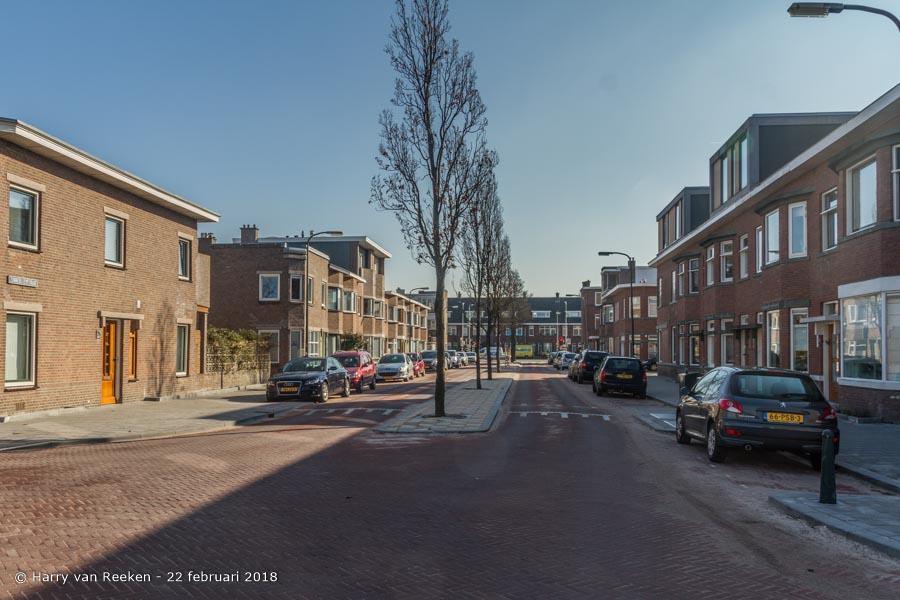 Zonnebloemstraat-wk12-03