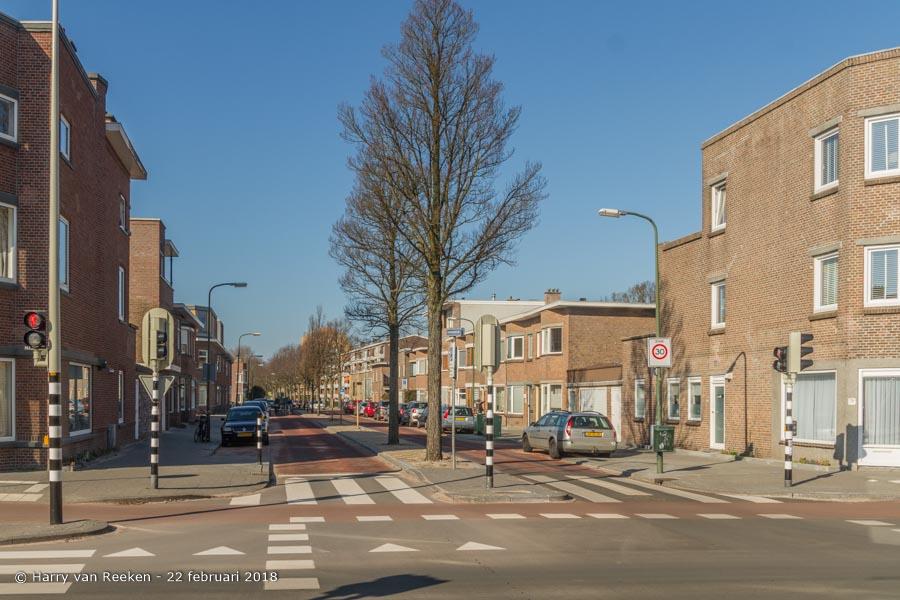 Zonnebloemstraat-wk12-05