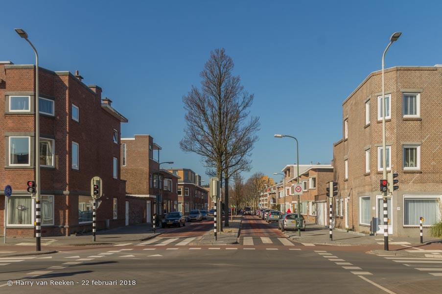 Zonnebloemstraat-wk12-07